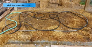 wet cement under straw with a soaker hose to water cure it