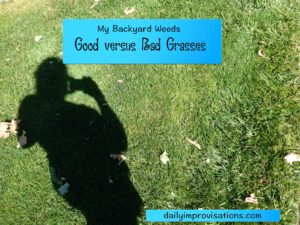 grasses good versus bad