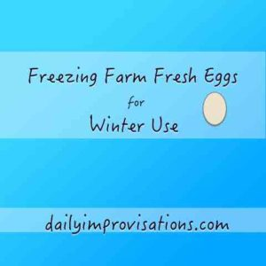 Freezing Farm Fresh Eggs for Winter Use