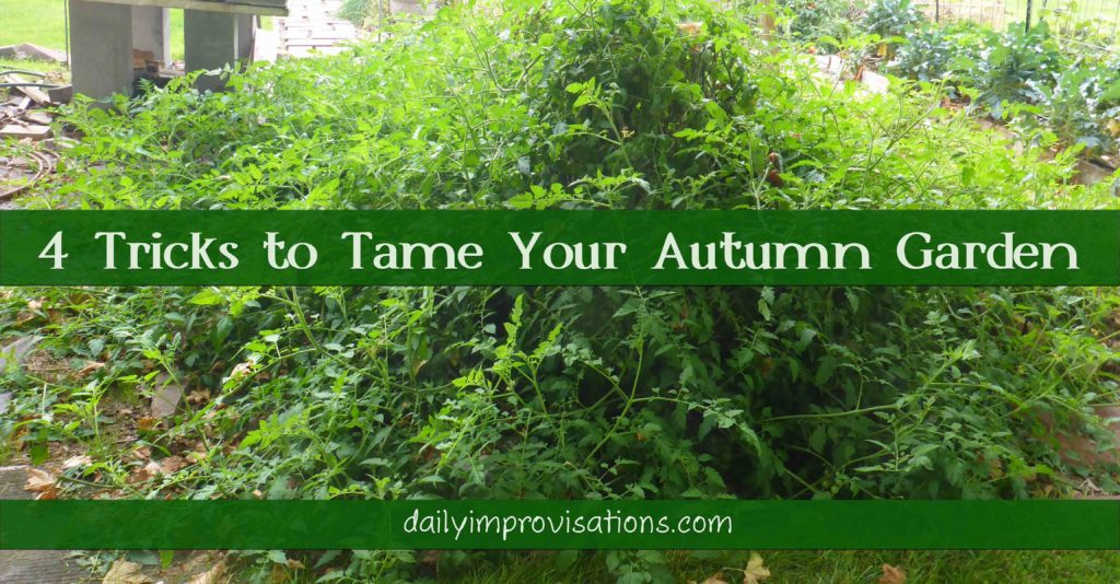 4 Tricks to Tame Your Autumn Garden
