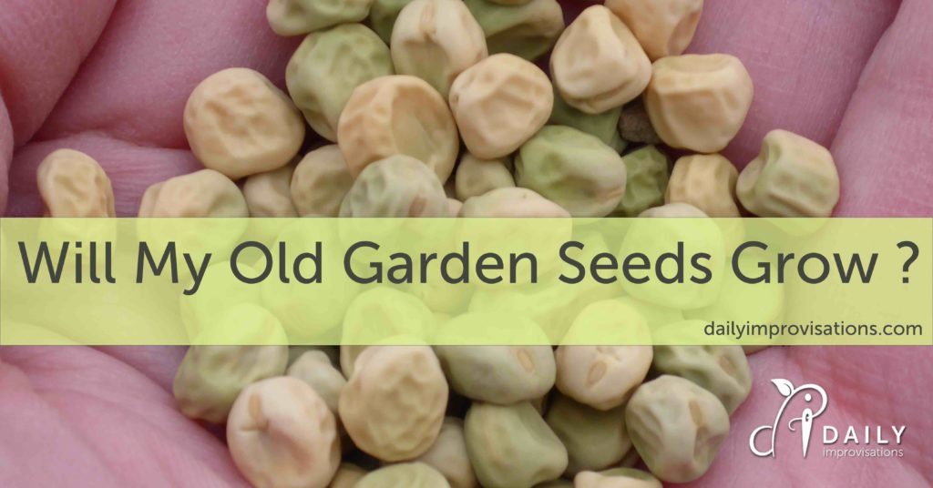 Will My Old Garden Seeds Grow ?