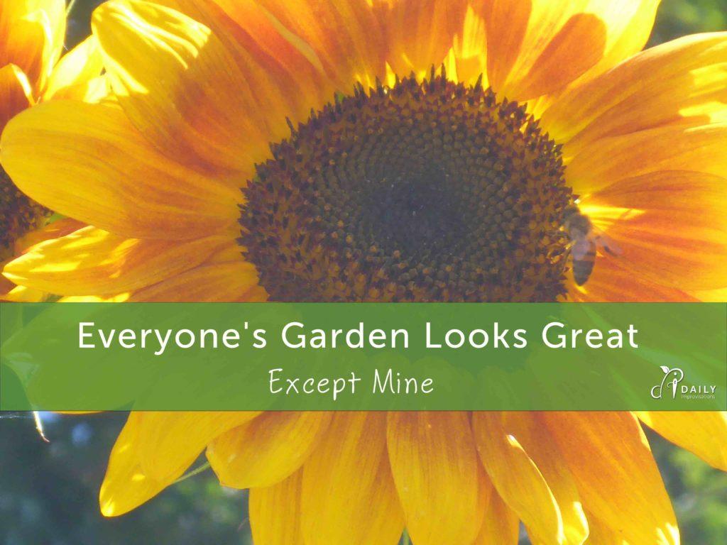 Everyone's Garden Looks Great Except Mine