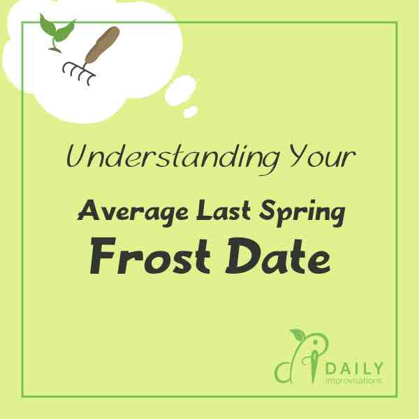 Understanding Your Average Last Spring Frost Date