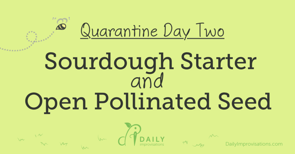 Quarantine Day 2: Sourdough Starter and Open Pollinated Seed