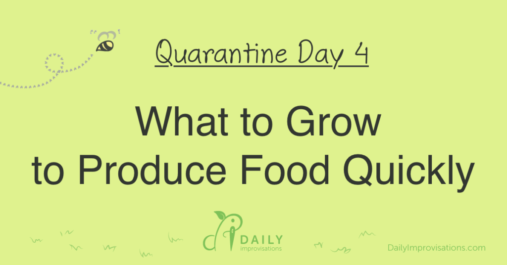 Quarantine Day 4: What to Grow to Produce Food Quickly