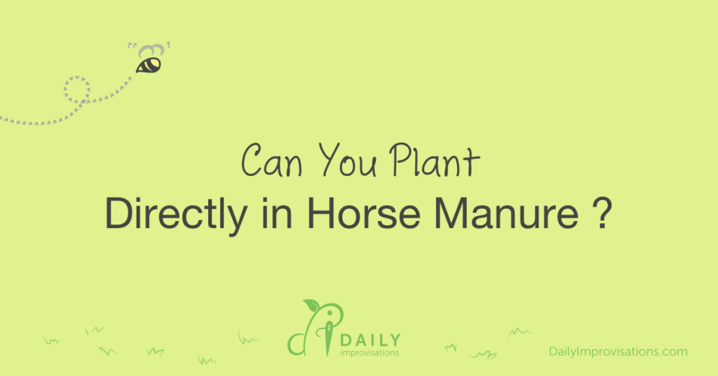 Can You Plant Directly in Horse Manure ?